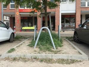Guerilla Gardening Rostock (3)